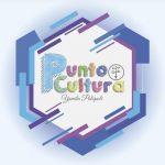 Punto Cultura  Studio de Arte y Danza